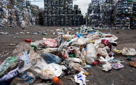 One step closer to a cure for plastic waste