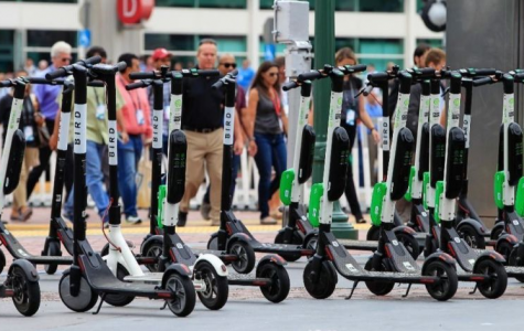 Electric Scooter Apocalypse