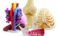 This photo is from TCT magazine and illustrates a few examples of the medical models that can be made from 3-D printing.